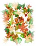 Illustrazione che rappresenta le foglie fotografie stock libere da diritti