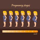 Illustrazione circa la gravidanza illustrazione di stock