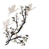 Illustrazione con gli uccelli cinesi della gru e del susino Immagini Stock Libere da Diritti
