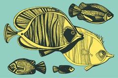 Illustrazione con i pesci, oceano di vettore Fotografia Stock Libera da Diritti