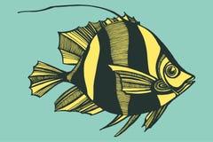 Illustrazione con i pesci, oceano di vettore Fotografie Stock Libere da Diritti