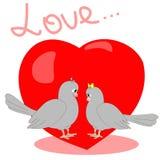 Illustrazione con i piccioni Immagine Stock