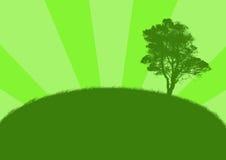 Illustrazione con l'albero verde Immagine Stock