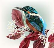 Illustrazione con l'uccello e ramo con i fiori illustrazione vettoriale