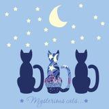 Illustrazione con tre gatti Gatto misterioso di titolo Gatti che a Fotografia Stock