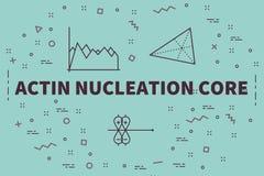 Illustrazione concettuale di affari con la nucleazione dell'actina di parole illustrazione vettoriale