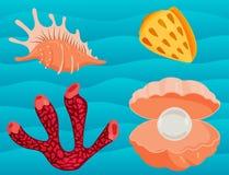 Illustrazione corallina marina di vettore della copertura superiore del fumetto delle conchiglie e delle stelle marine dell'ocean illustrazione vettoriale