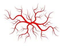Illustrazione creativa di vettore delle vene rosse isolate su fondo Nave umana, arterie di salute, progettazione di arte Estratto illustrazione di stock