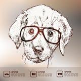 Illustrazione d'annata del cucciolo dei pantaloni a vita bassa con i vetri Illustrazione di Stock
