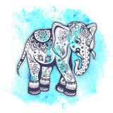Illustrazione d'annata dell'elefante dell'acquerello Fotografia Stock