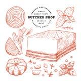 Illustrazione d'annata della carne di vettore Bacon, spezie ed erbe disegnati a mano Ingredienti di alimento grezzi Retro schizzo fotografie stock libere da diritti