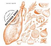 Illustrazione d'annata della carne di vettore Jamon, spezie ed erbe disegnati a mano Ingredienti di alimento grezzi Retro schizzo fotografie stock