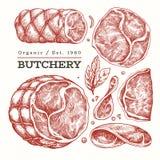 Illustrazione d'annata della carne di vettore Prosciutto, fette del prosciutto, spezie ed erbe disegnati a mano Ingredienti di al immagini stock libere da diritti