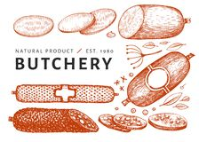 Illustrazione d'annata della carne di vettore Salsiccie, spezie ed erbe disegnate a mano Ingredienti di alimento Retro schizzo Pu fotografie stock libere da diritti