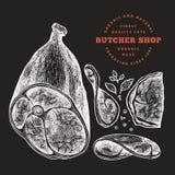 Illustrazione d'annata della carne di vettore sul bordo di gesso Prosciutto, fette del prosciutto, spezie ed erbe disegnati a man immagine stock