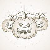 Illustrazione d'annata di Halloween di vettore con le zucche disegnate a mano Immagini Stock Libere da Diritti