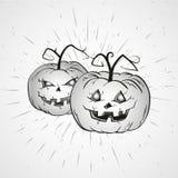 Illustrazione d'annata di Halloween di vettore con le zucche disegnate a mano Fotografia Stock
