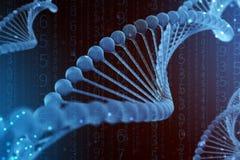 illustrazione 3d della molecola del DNA La molecola blu elicoidale di un nucleotide nell'organismo come in spazio Genoma di conce royalty illustrazione gratis