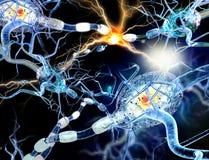 illustrazione 3d delle cellule nervose Immagini Stock Libere da Diritti