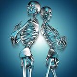 illustrazione 3d delle coppie dello scheletro del metallo illustrazione di stock