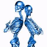 illustrazione 3d delle coppie di scheletro del metallo isolate su bianco royalty illustrazione gratis