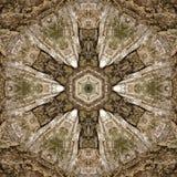 illustrazione 3D Immagine astratta di una superficie di legno di una corteccia di un albero Fotografie Stock Libere da Diritti