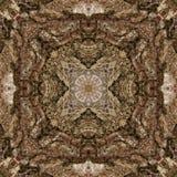 illustrazione 3D Immagine astratta di una superficie di legno di una corteccia di un albero Immagini Stock
