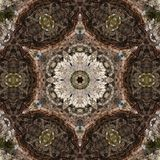 illustrazione 3D Immagine astratta di una superficie di legno di una corteccia di un albero Fotografia Stock