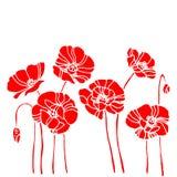 Illustrazione de del disegno del modello della pianta di vettore del fiore della natura del papavero illustrazione di stock