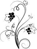 Illustrazione decorativa dell'uva (abbozzo) illustrazione vettoriale