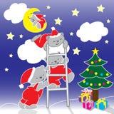 Illustrazione degli orsi di Natale alla mezzanotte immagine stock