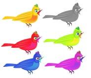 Illustrazione degli uccelli Immagini Stock Libere da Diritti