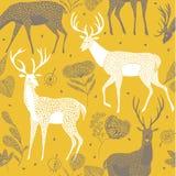 Illustrazione dei cervi con il antler ed i fiori illustrazione vettoriale