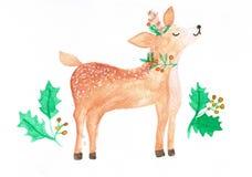 Illustrazione dei cervi svegli, natale dell'acquerello di tema royalty illustrazione gratis
