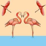 Illustrazione dei fenicotteri in volo e dell'acqua Fotografia Stock Libera da Diritti