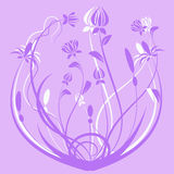 Illustrazione dei fiori Immagine Stock