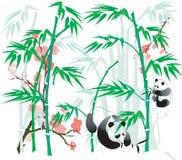 Illustrazione del bambù e del panda. illustrazione di stock
