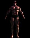 Illustrazione del Bodybuilder maschio voluminoso Fotografia Stock Libera da Diritti