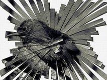 Illustrazione del cambaxirra in bianco e nero Immagini Stock