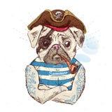 Illustrazione del cane del carlino del pirata su fondo blu nel vettore eps10 Fotografia Stock Libera da Diritti