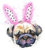 Illustrazione del cane del carlino dell'acquerello Fotografia Stock Libera da Diritti