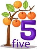 Carattere di numero 5 con l'albero arancio illustrazione di stock