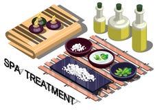 Illustrazione del concetto grafico di trattamento della stazione termale di informazioni Immagine Stock