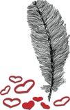 Illustrazione del cuore e della piuma Fotografie Stock