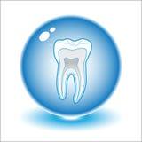 Illustrazione del dente di vettore immagine stock libera da diritti