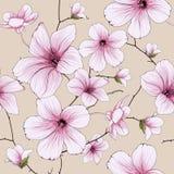 Illustrazione del fiore del fiore royalty illustrazione gratis