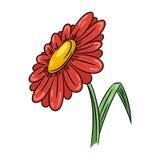 Illustrazione del fiore della margherita Fotografia Stock Libera da Diritti