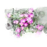 Illustrazione del fiore del giglio della pioggia di rosa del fiore Fotografia Stock Libera da Diritti
