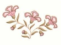 Illustrazione del fiore nel colore rosa Fotografia Stock