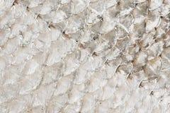 Illustrazione del fondo della pelle del pesce Fotografie Stock
